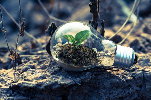 Wie gelooft dat het goedkomt met de aarde?