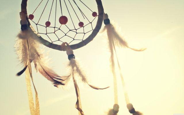 De Droominee: 'Met wat creativiteit redden we onszelf wel'